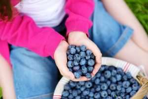 girl holding blueberries outside